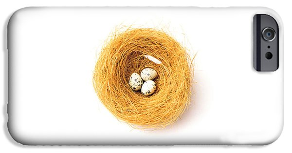 Cut-outs iPhone Cases - Three Eggs In Nest Illustrated On White iPhone Case by Panoramic Images
