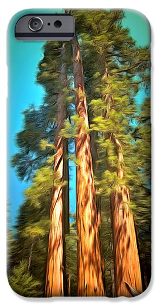 Tree Roots Paintings iPhone Cases - Three Giant Sequoias Digital iPhone Case by Barbara Snyder