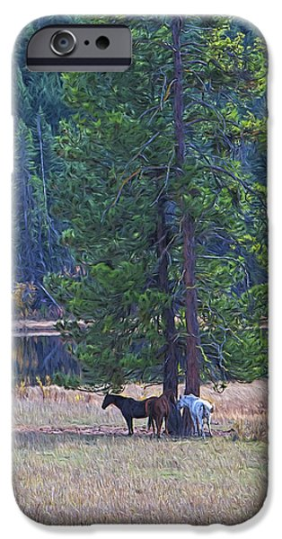Fall Scenes iPhone Cases - Three Horses Under a Pine Tree digital oil painting iPhone Case by Sharon  Talson
