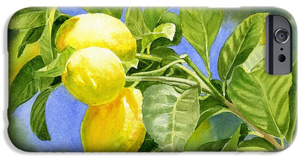 Lemon iPhone Cases - Three Lemons iPhone Case by Sharon Freeman