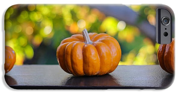 Ledge iPhone Cases - Three Minuture Pumpkins iPhone Case by Michael Hope