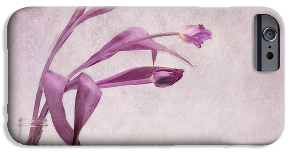 Flower Still Life iPhone Cases - Three Of Us iPhone Case by Priska Wettstein