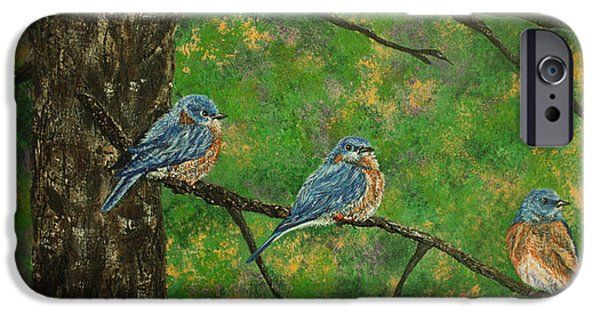 Birds On Limbs iPhone Cases - Three on a Tree iPhone Case by Linda Eversole