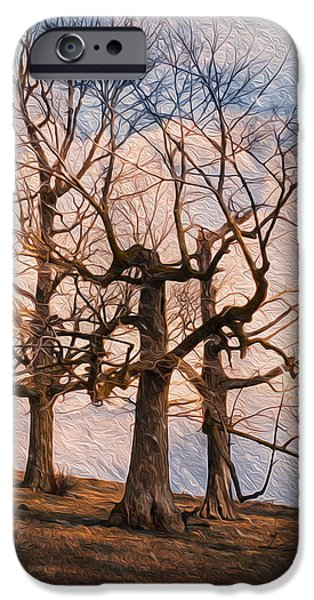 Soil Digital Art iPhone Cases - Three On The Hill - Color iPhone Case by Jack Zulli