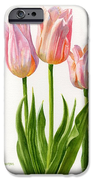 Petals iPhone Cases - Three Peach Colored Tulips iPhone Case by Sharon Freeman