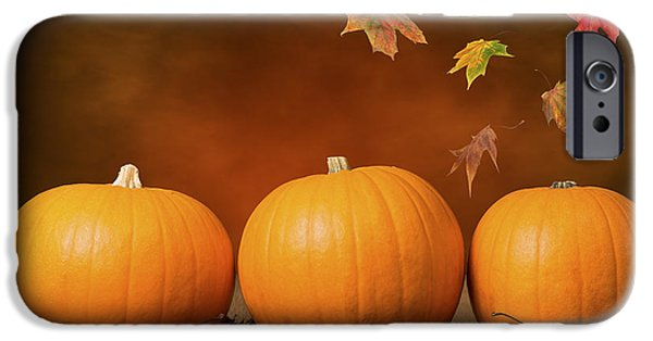 Fall Season iPhone Cases - Three Pumpkins iPhone Case by Amanda And Christopher Elwell
