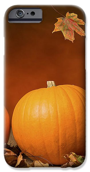 Three Pumpkins iPhone Case by Amanda And Christopher Elwell