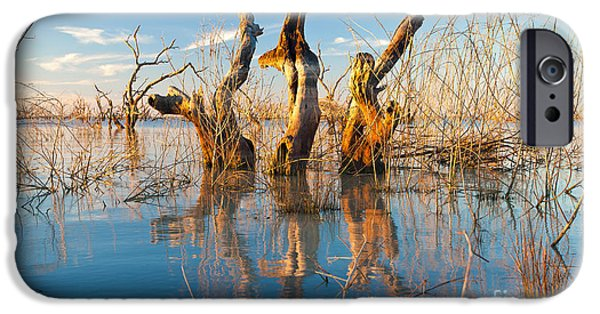 Submerged iPhone Cases - Three Sisters iPhone Case by Bill  Robinson