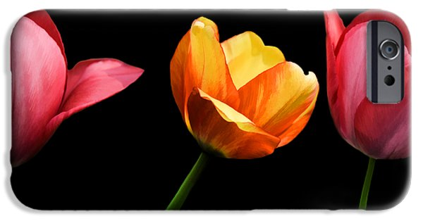 Michael Mixed Media iPhone Cases - Spring Tulips iPhone Case by Steven  Michael