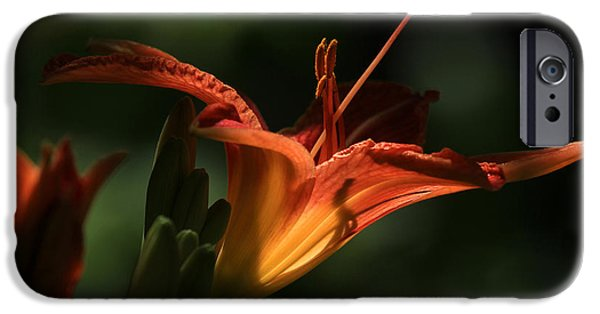 Day Lilies iPhone Cases - Throat Shadows iPhone Case by Donna Kennedy