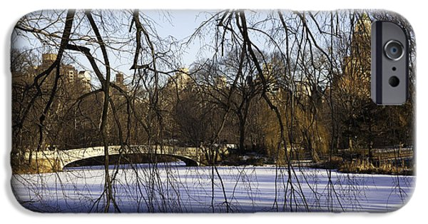 Snowy Day iPhone Cases - Through The Branches 1 - Central Park - NYC iPhone Case by Madeline Ellis
