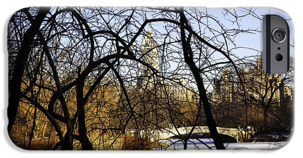 Snowy Day iPhone Cases - Through The Branches 3 - Central Park - NYC iPhone Case by Madeline Ellis