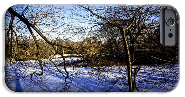 Snowy Day iPhone Cases - Through The Branches 4 - Central Park - NYC iPhone Case by Madeline Ellis