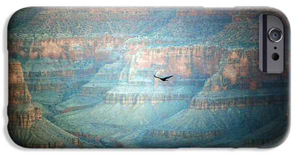 Arizona iPhone Cases - Thunderbird in Flight inside Grand Canyon National Park Valley Grain iPhone Case by Shawn O