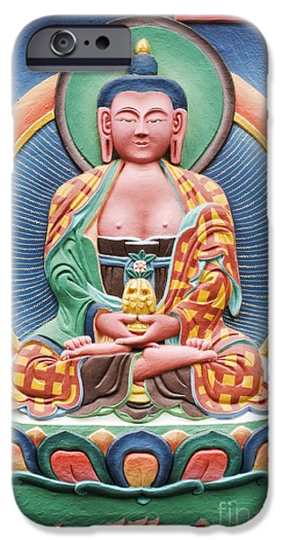 Tibetan Buddhism iPhone Cases - Tibetan buddhist deity sculpture iPhone Case by Tim Gainey