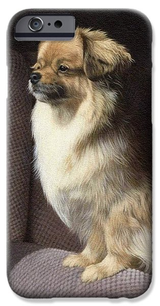 Dogs Paintings iPhone Cases - Tibetan Spaniel Painting iPhone Case by Rachel Stribbling
