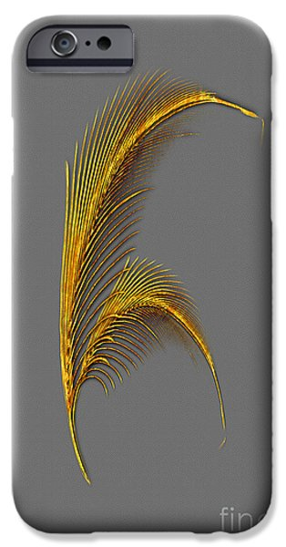 Multimedia iPhone Cases - Tickle Feathers iPhone Case by Tina M Wenger