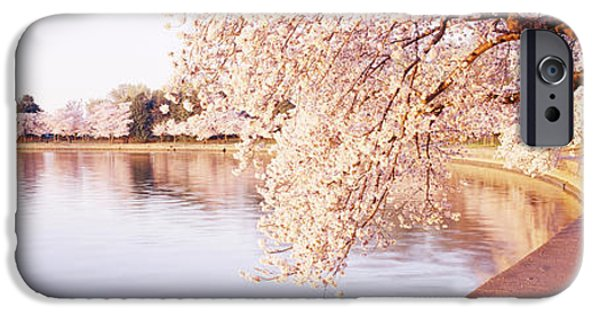 Cherry Blossoms iPhone Cases - Tidal Basin, Washington Dc, District Of iPhone Case by Panoramic Images