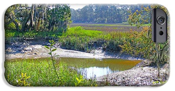 Tidal Creek iPhone Cases - Tidal Creek in the Savannah iPhone Case by Duane McCullough