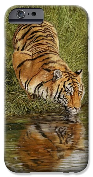 Bengal Tiger iPhone Cases - Tiger iPhone Case by David Stribbling