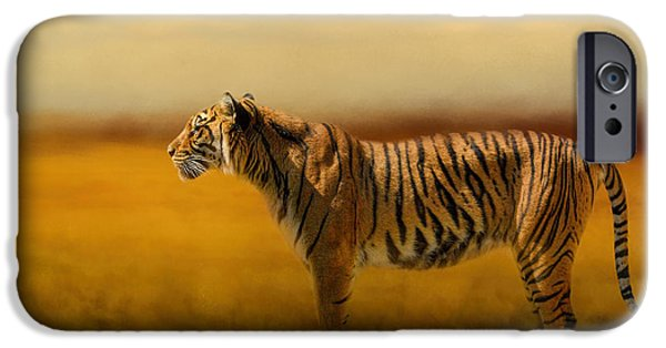 The Tiger iPhone Cases - Tiger In The Golden Field iPhone Case by Jai Johnson