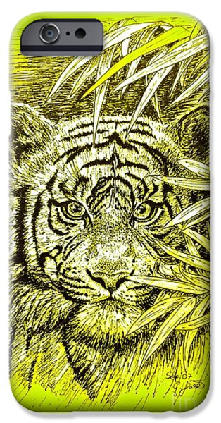 The Tiger Drawings iPhone Cases - Tiger - King Of The Jungle iPhone Case by Gitta Glaeser