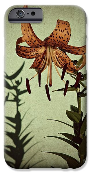 Berry iPhone Cases - Tiger Lily iPhone Case by Chris Berry