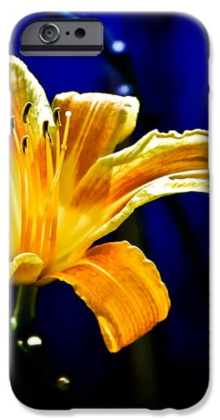 Tiger Lily on Waters Edge iPhone Case by Bob Orsillo