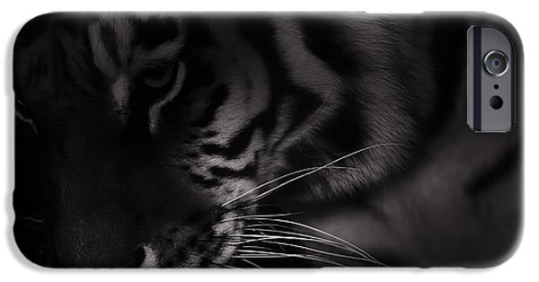 Animals Photographs iPhone Cases - Tiger Monochrome iPhone Case by Martin Newman