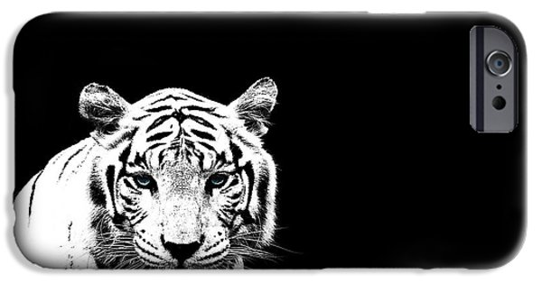 White Tiger iPhone Cases - Tiger On Black iPhone Case by Mark Rogan