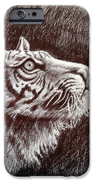 Animal Drawings iPhone Cases - Tiger Profile iPhone Case by Rick Hansen