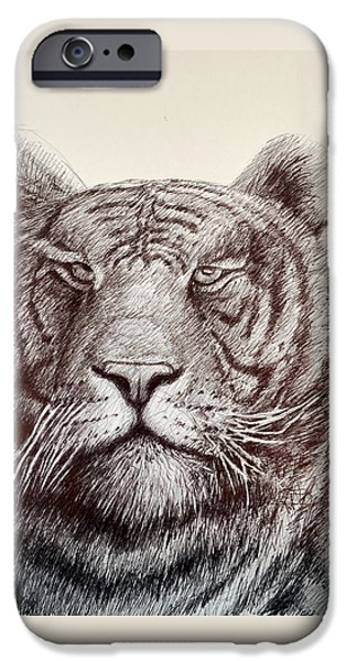 The Tiger Drawings iPhone Cases - Tiger Stripes iPhone Case by Rick Hansen