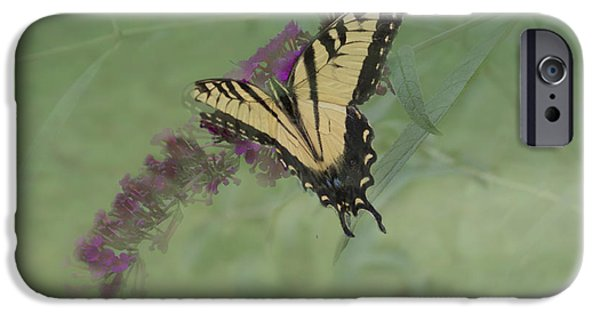Meadow Photographs iPhone Cases - Tiger Swallow Tail Butterfly And Friend iPhone Case by Luther   Fine Art