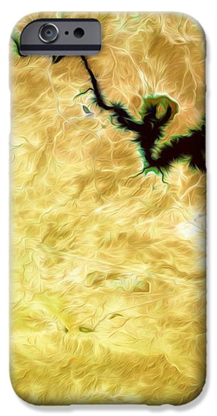 Tigris River Iraq iPhone Case by Phill Petrovic