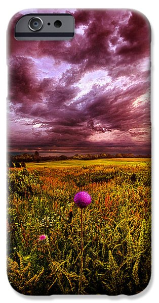 Thistle iPhone Cases - Time and Again iPhone Case by Phil Koch