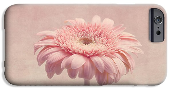 Innocence iPhone Cases - Timeless iPhone Case by Kim Hojnacki