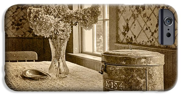 Furniture iPhone Cases - Tin Box and Dried Hydrangea -Vintage Interior - Sepia iPhone Case by Nikolyn McDonald