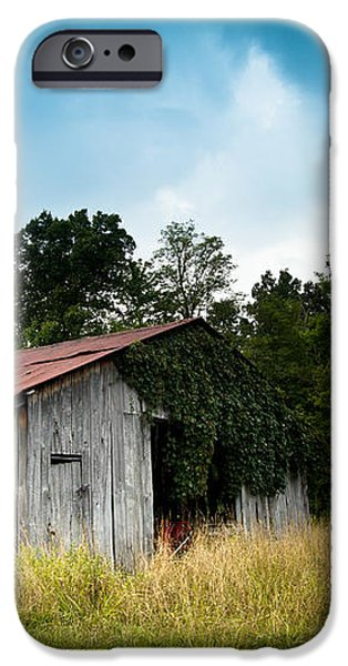 tin roof...ivy covered barn iPhone Case by Shane Holsclaw