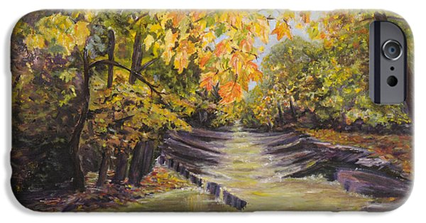 Creek iPhone Cases - Tinicum Creek  iPhone Case by Suzanne Zoglio