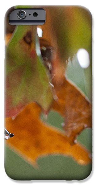 Tiny Leaf iPhone Case by Barbara Shallue