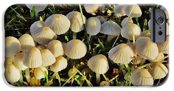 Little iPhone Cases - Tiny Mushrooms iPhone Case by Don Baker