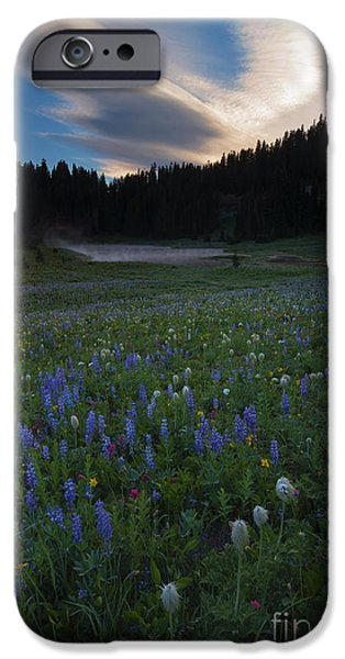 Paintbrush Photographs iPhone Cases - Tipsoo Sunrise iPhone Case by Mike  Dawson