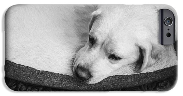 Sad iPhone Cases - Tired Pup iPhone Case by Diane Diederich