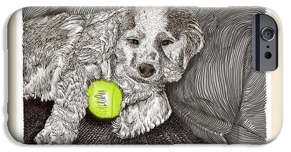 Dog With Tennis Ball iPhone Cases -  Tired Puppy iPhone Case by Jack Pumphrey
