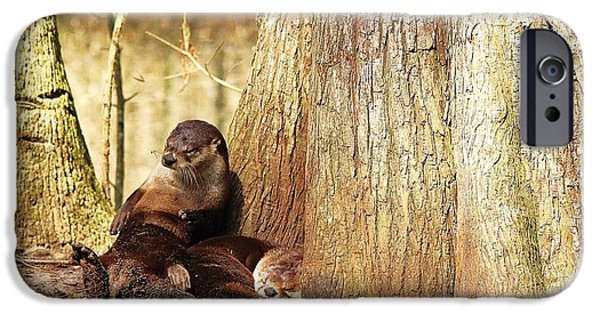 Otter Digital Art iPhone Cases - Tired River Otters iPhone Case by Paulette Thomas