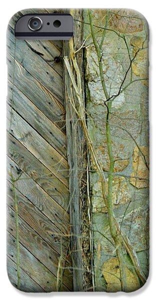 TN Door 1 iPhone Case by Jeffrey J Nagy