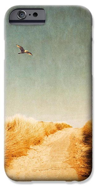 Flying Seagull iPhone Cases - To The Beach iPhone Case by Wim Lanclus