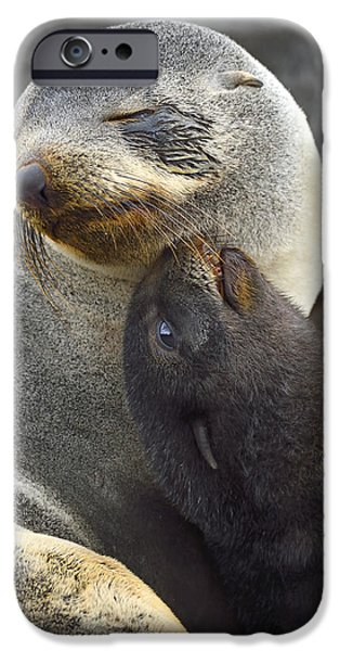 Bonding iPhone Cases - Together iPhone Case by Tony Beck
