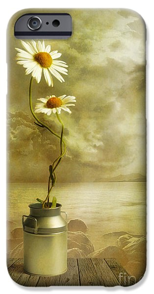 Flower Still Life iPhone Cases - Together iPhone Case by Veikko Suikkanen