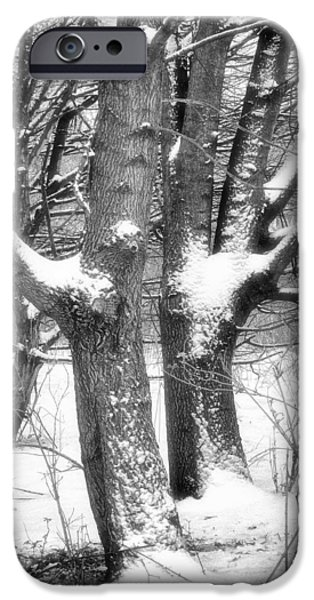 Recently Sold -  - Wintertime iPhone Cases - Together iPhone Case by Wim Lanclus
